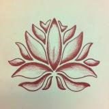 Lotus Anja