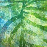 Bewerkt-groot-blad-vingerplant